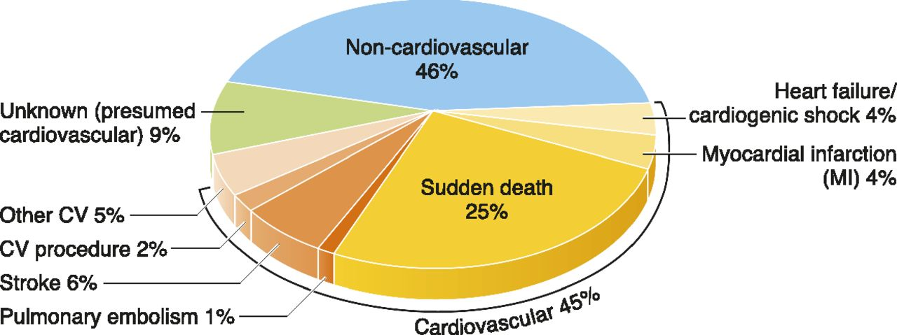 Arrhythmia and Sudden Death in Hemodialysis Patients