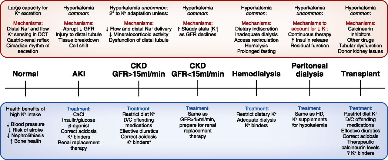 Hyperkalemia Across The Continuum Of Kidney Function American Society Of Nephrology