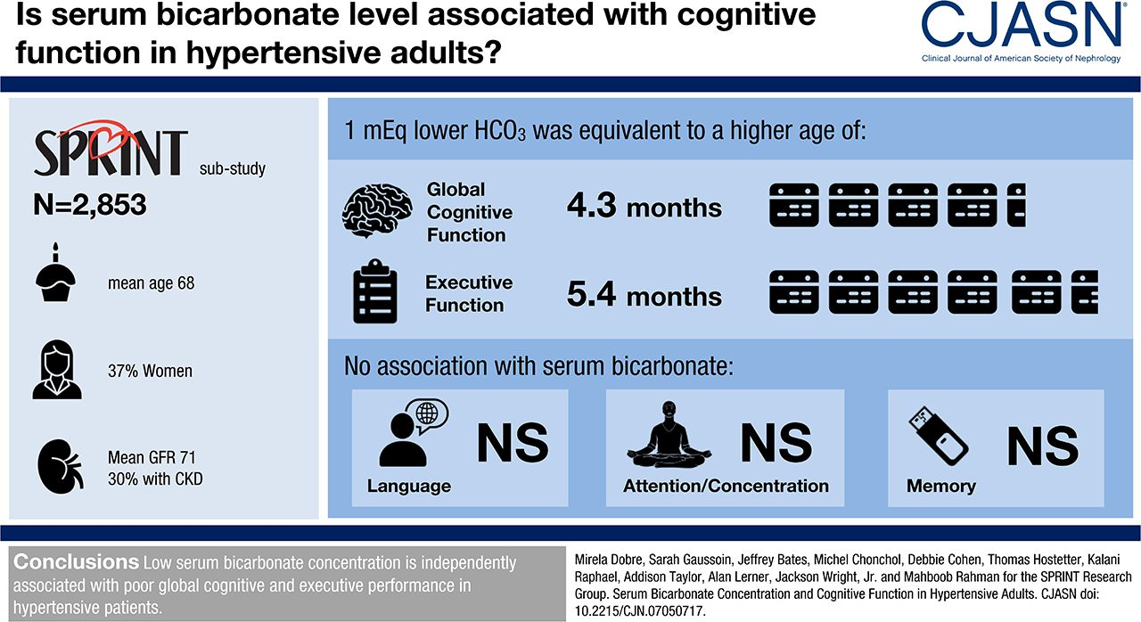 Serum Bicarbonate Concentration and Cognitive Function in