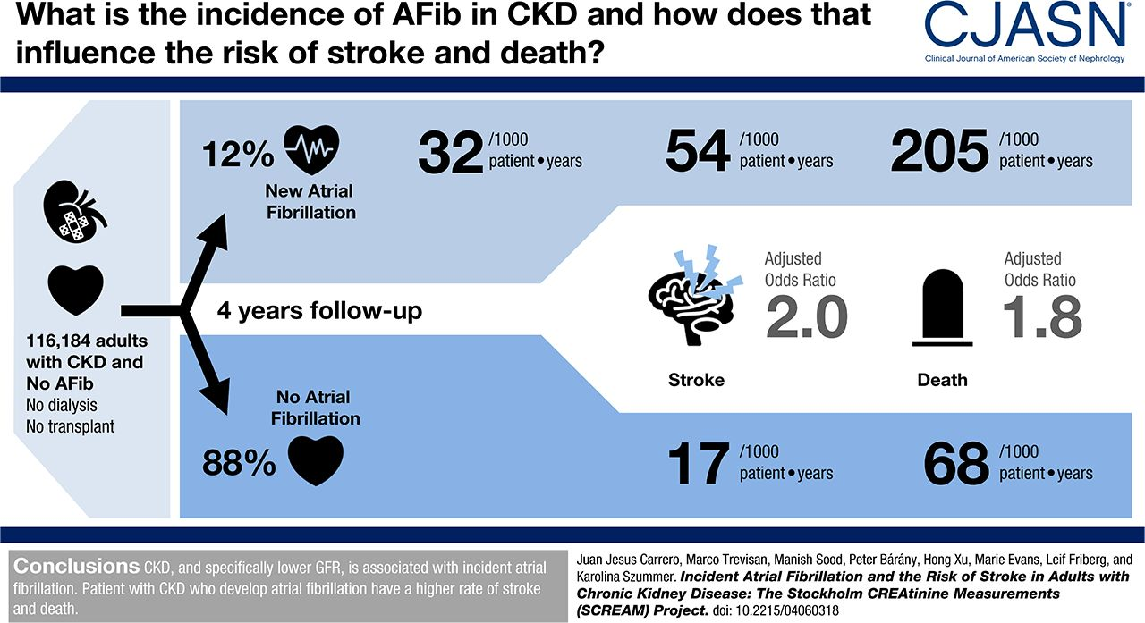 Incident Atrial Fibrillation and the Risk of Stroke in