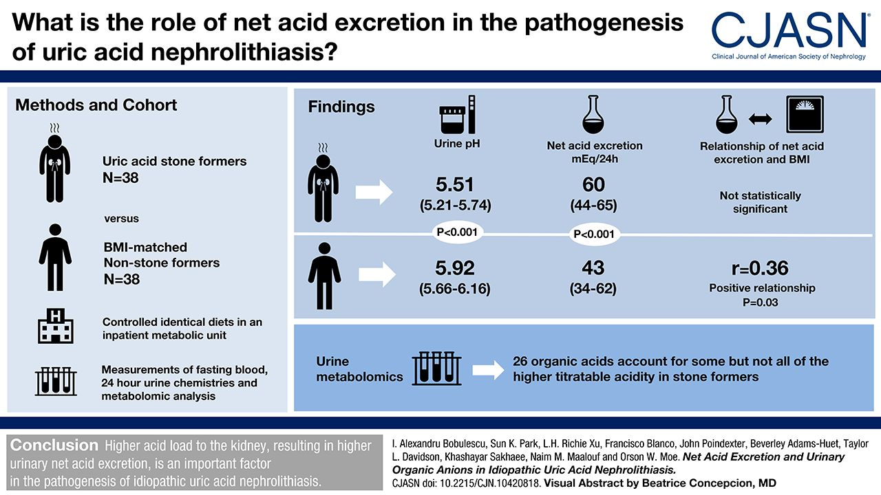 Net Acid Excretion and Urinary Organic Anions in Idiopathic