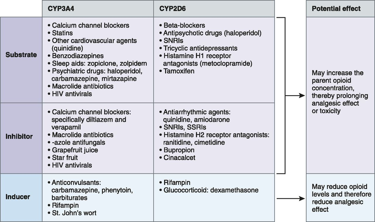 Clinical Pharmacology Considerations in Pain Management in Patients