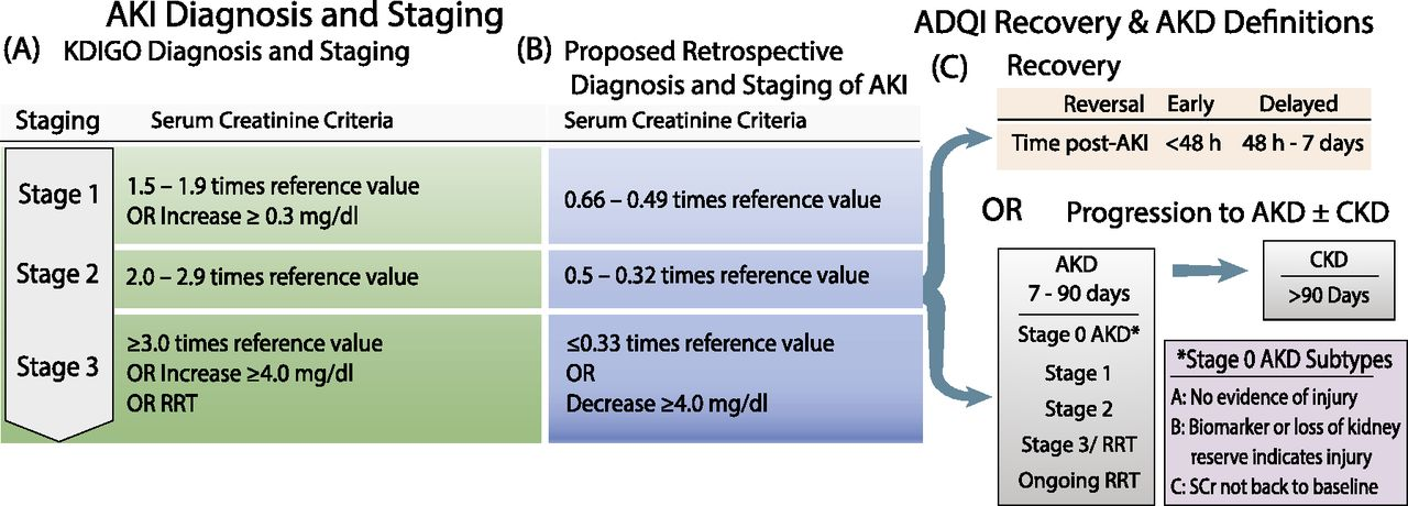 Defining Early Recovery Of Acute Kidney Injury American Society Of Nephrology