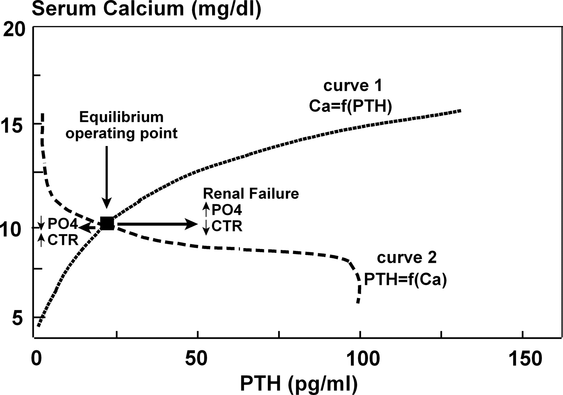 Dynamics Of Parathyroid Hormone Secretion In Health And Secondary