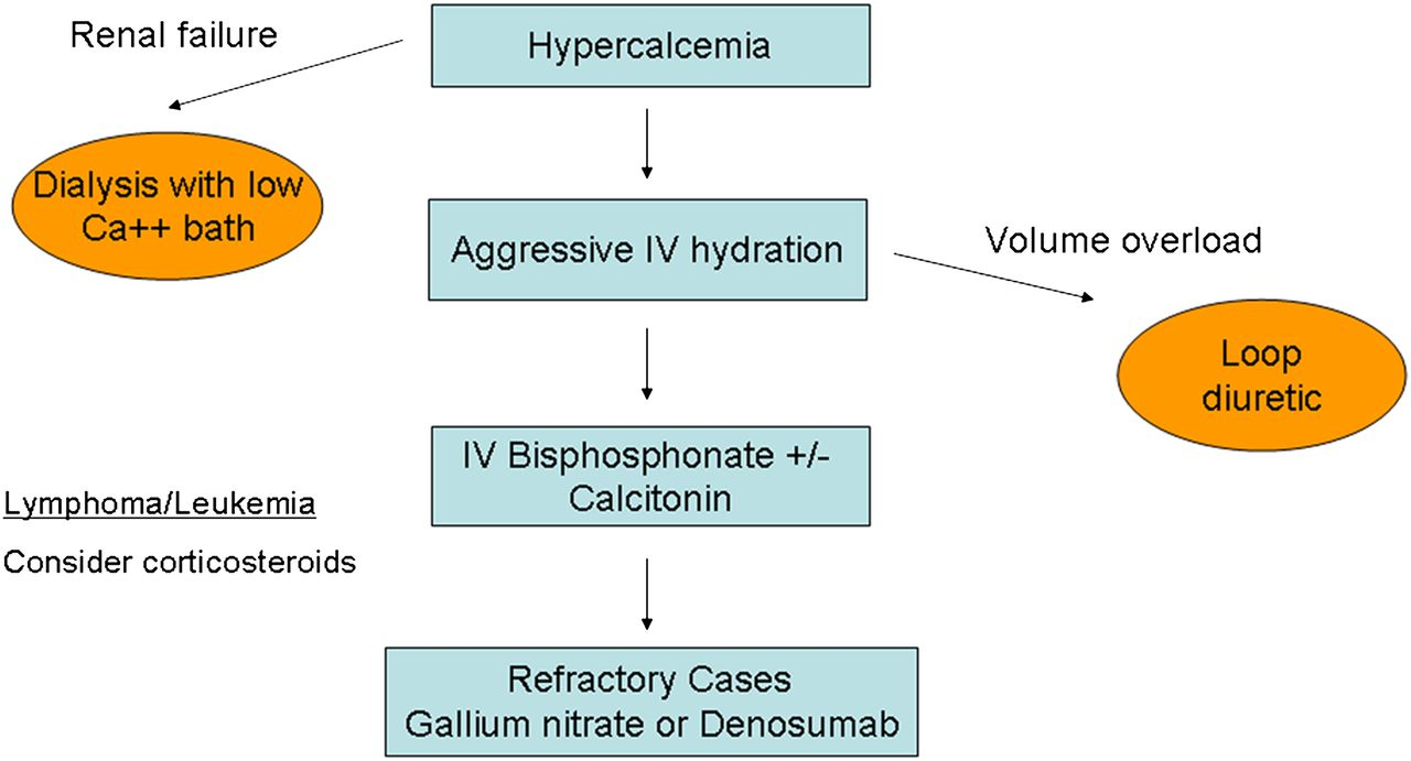 Onco Nephrology The Pathophysiology And Treatment Of Malignancy Associated Hypercalcemia American Society Of Nephrology