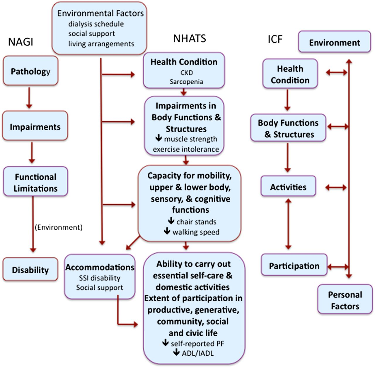 Assessing Physical Function and Physical Activity in Patients with