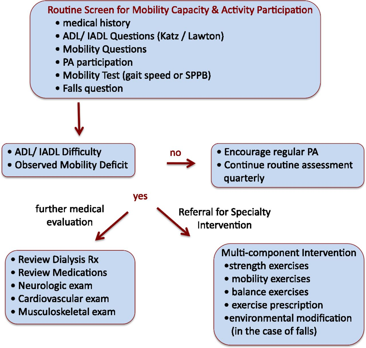 Assessing Physical Function and Physical Activity in