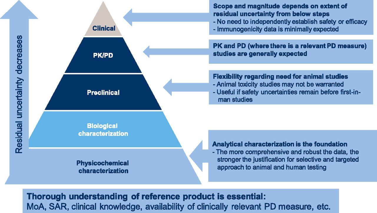 The Approval Process for Biosimilar Erythropoiesis