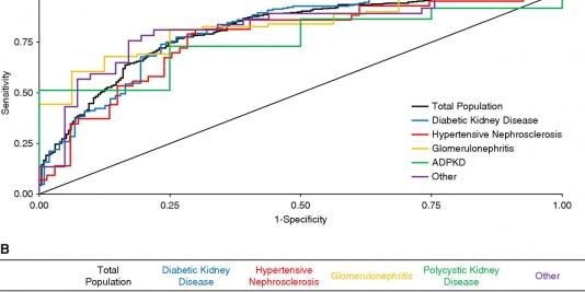 Performance of the Kidney Failure Risk Equation by Disease Etiology in Advanced CKD