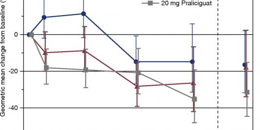 Effects of the Soluble Guanylate Cyclase Stimulator Praliciguat in Diabetic Kidney Disease: A Randomized Placebo-Controlled Clinical Trial