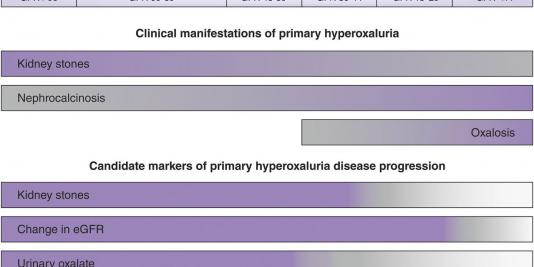 End Points for Clinical Trials in Primary Hyperoxaluria