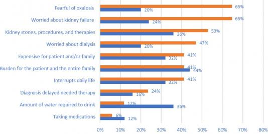 Primary Hyperoxaluria: The Patient and Caregiver Perspective