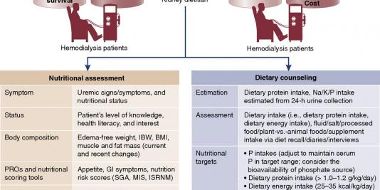 Dietary Therapy for Managing Hyperphosphatemia