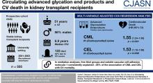 Circulating Advanced Glycation Endproducts and Long-Term Risk of Cardiovascular Mortality in Kidney Transplant Recipients