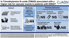 Trimethylamine <em>N</em>-Oxide and Cardiovascular Outcomes in Patients with End-stage Kidney Disease Receiving Maintenance Hemodialysis