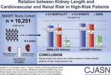Relation between Kidney Length and Cardiovascular and Renal Risk in High-Risk Patients