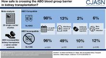 ABO-Incompatible Kidney Transplant Outcomes