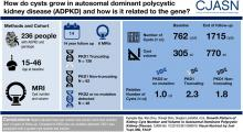 Growth Pattern of Kidney Cyst Number and Volume in Autosomal Dominant Polycystic Kidney Disease