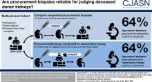 Procurement Biopsies in the Evaluation of Deceased Donor Kidneys