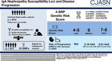 IgA Nephropathy Susceptibility Loci and Disease Progression