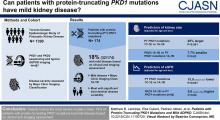 Patients with Protein-Truncating <em>PKD1</em> Mutations and Mild ADPKD