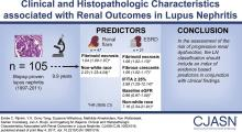 Clinical and Histopathologic Characteristics Associated with Renal Outcomes in Lupus Nephritis