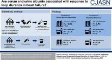 Serum and Urine Albumin and Response to Loop Diuretics in Heart Failure