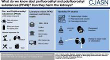 Perfluorinated Chemicals as Emerging Environmental Threats to Kidney Health