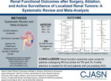 Renal Functional Outcomes after Surgery, Ablation, and Active Surveillance of Localized Renal Tumors: A Systematic Review and Meta-Analysis