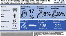 The Incidence, Causes, and Risk Factors of Acute Kidney Injury in Patients Receiving Immune Checkpoint Inhibitors