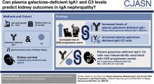 Plasma Galactose-Deficient IgA1 and C3 and CKD Progression in IgA Nephropathy
