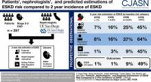 Patients,' Nephrologists,' and Predicted Estimations of ESKD Risk Compared with 2-Year Incidence of ESKD