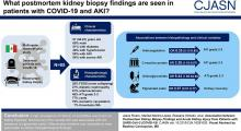 Association between Postmortem Kidney Biopsy Findings and Acute Kidney Injury from Patients with SARS-CoV-2 (COVID-19)