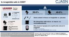 Safety of Liraglutide in Type 2 Diabetes and Chronic Kidney Disease