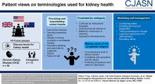 Patient and Caregiver Perspectives on Terms Used to Describe Kidney Health