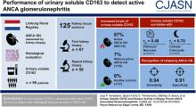 Urinary Soluble CD163 and Disease Activity in Biopsy-Proven ANCA-Associated Glomerulonephritis