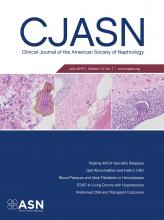 Clinical Journal of the American Society of Nephrology: 14 (7)