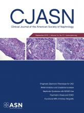 Clinical Journal of the American Society of Nephrology: 14 (9)