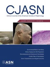 Clinical Journal of the American Society of Nephrology: 15 (6)