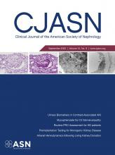 Clinical Journal of the American Society of Nephrology: 15 (9)